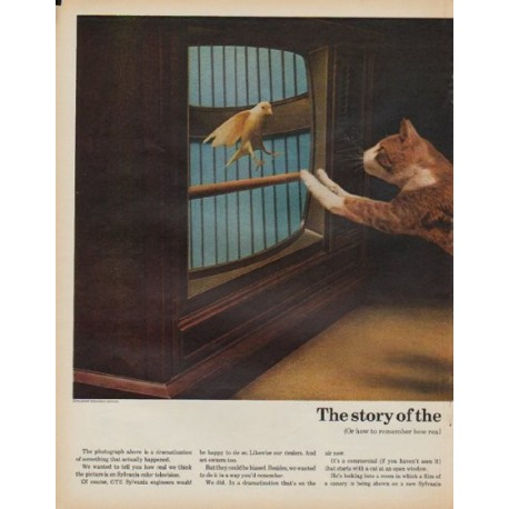"""1971 Sylvania TV Ad """"cat and the canary"""""""