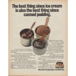 "1971 Birds Eye Pudding Ad ""The best thing since ice cream"""