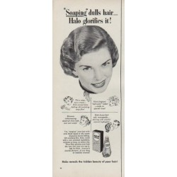 "1951 Halo Shampoo Ad ""Soaping dulls hair"""