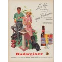 "1951 Budweiser Ad ""Live life"""