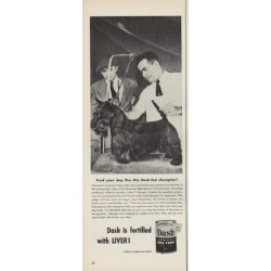 "1952 Dash Dog Food Ad ""Feed your dog"""