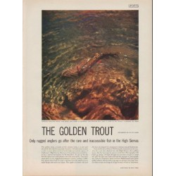 "1952 The Golden Trout Article ""rugged anglers"""