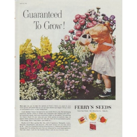 """1961 Ferry's Seeds Ad """"Guaranteed to Grow!"""""""