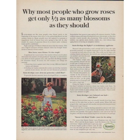 "1961 Scotts Ad ""people who grow roses"""