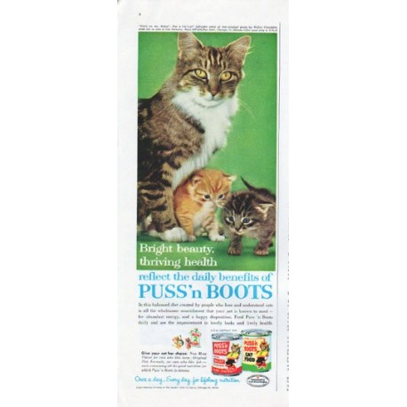 "1961 Puss 'n Boots Cat Food Ad ""Bright beauty"""
