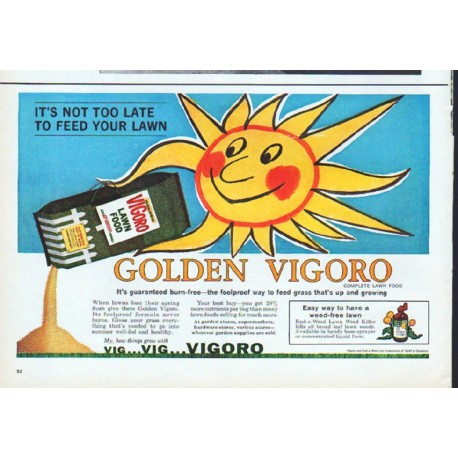 "1961 Vigoro Lawn Food Ad ""Golden Vigoro"""