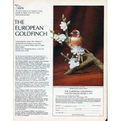 "1979 The Royal Society for Protection of Birds Ad ""European Goldfinch"""