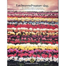 """1979 Florists' Transworld Delivery Ad """"heaven & nature"""""""