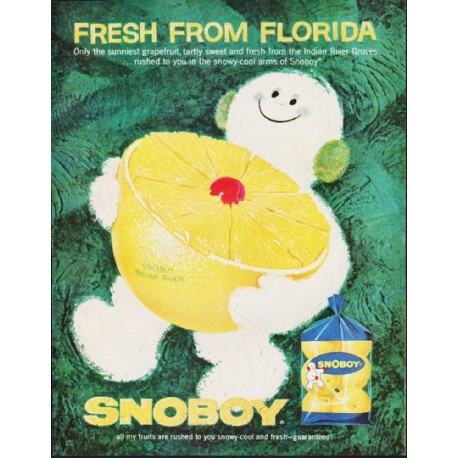 """1963 Snoboy Ad """"Fresh From Florida"""""""