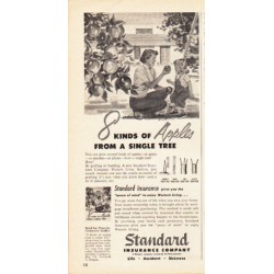 "1953 Standard Insurance Company Ad ""8 kinds of Apples"""