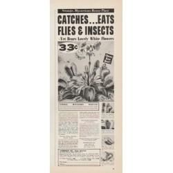 "1961 Thoresen Ad ""Eats Flies & Insects"""