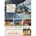 "1950 Canadian Club Ad ""St. Bernards race disaster across Alpine snows"""