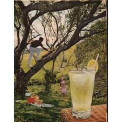 "1965 Rums of Puerto Rico Ad ""Daiquiri Collins"""