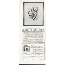 1964 Birds of America Ad ~ An American Home Portfolio