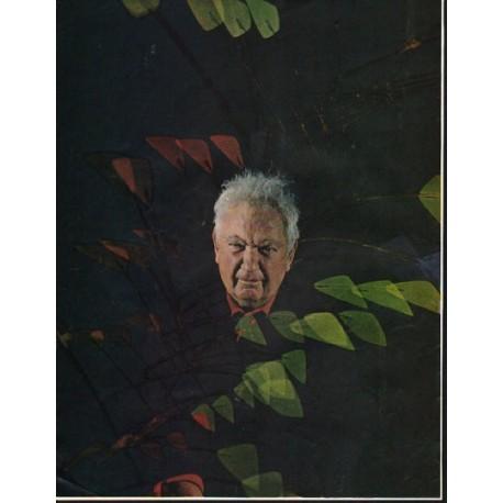 1965 Alexander Calder Article ~ soaring art