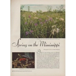 "1949 Spring on the Mississippi Article ""photos by Andreas Feininger"""