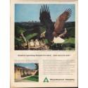 "1961 Weyerhaeuser Company Ad ""demand for wood"""