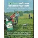 """1964 Salem Cigarettes Ad """"freshens your taste"""""""
