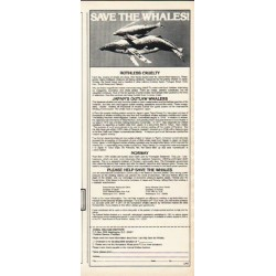 "1980 Animal Cruelty Institute Ad ""Save The Whales"""