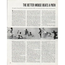 "1965 Maury Wills Article ""Better Mouse"" ~ By Jack Murphy"