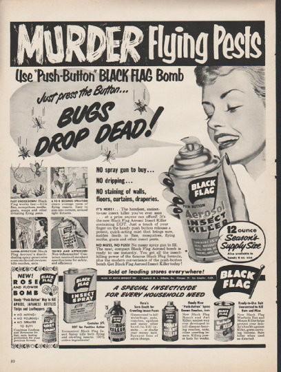 1953 black flag insect killer vintage ad quotmurder flying pestsquot
