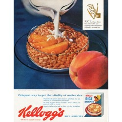 "1962 Kellogg's Rice Krispies Ad ""get the vitality"""