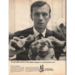 "1966 Clairol Shampoo Ad ""just plain careless"""
