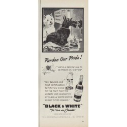 "1952 Black & White Scotch Ad ""Pardon Our Pride !"""